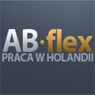 logo_Abflex_Consulting
